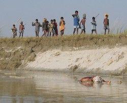 Leichen Im Ganges